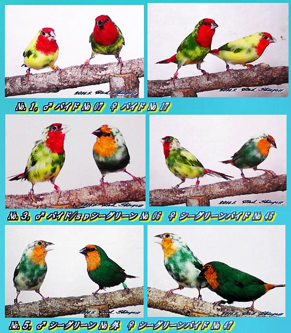 d0211219_22323665.jpg