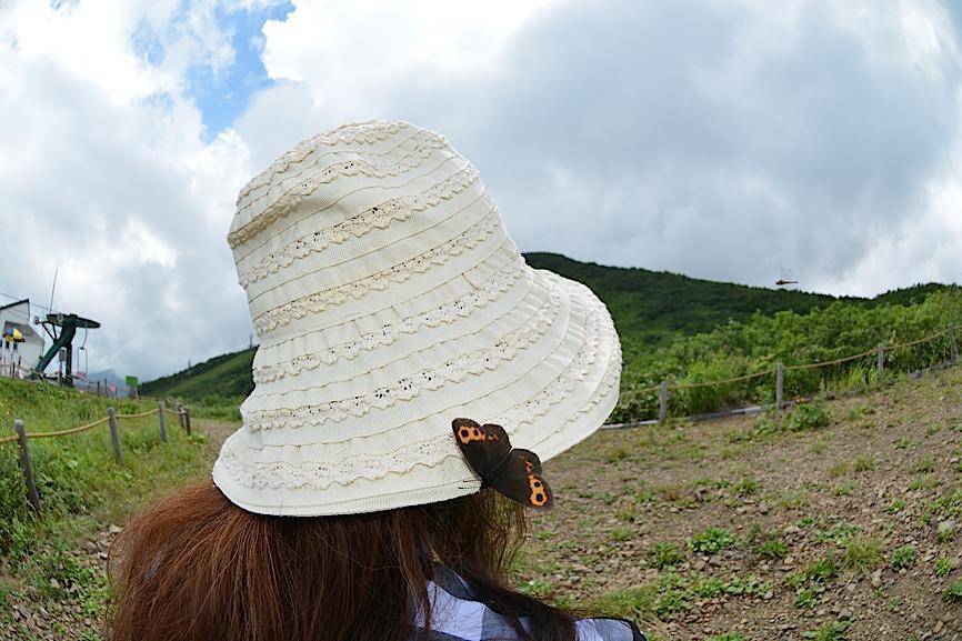 信州の蝶たち2014、その1 ベニヒカゲ三昧(2014年8月21日) _d0303129_2285878.jpg