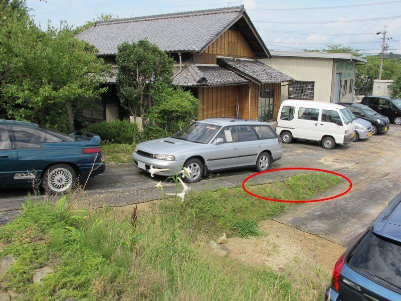 ヤマユリとカサブランカ_f0076731_16523425.jpg