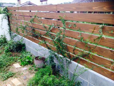 庭、リニューアル!_c0274374_17361092.jpg