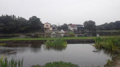 熊本の思い出2_b0228113_15571442.jpg
