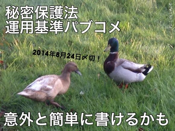 b0326569_19395687.jpg