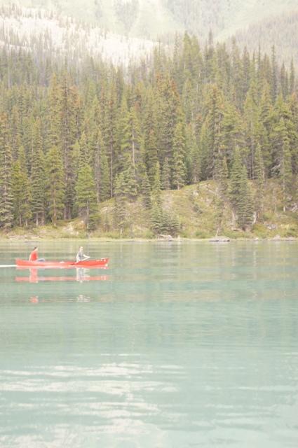 カナダ旅行(5)=ジャスパー国立公園=_f0314272_05262479.jpg
