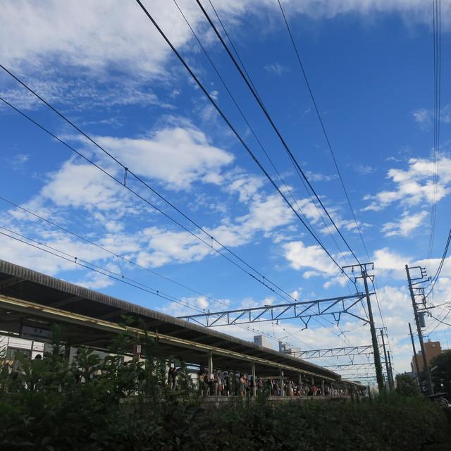 鎌倉へShort Trip_a0000912_17452835.jpg