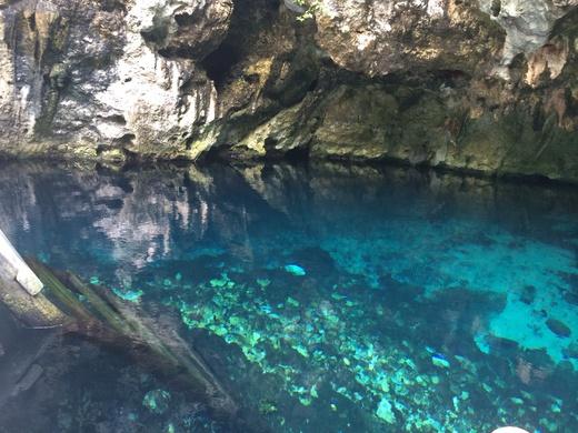 Gran Cenote グランセノーテ_b0129832_0192678.jpg