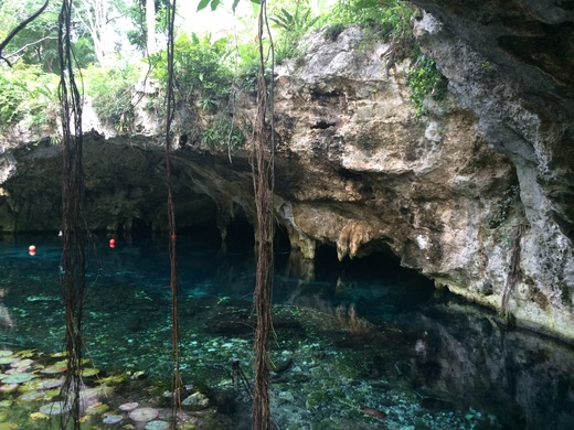 Gran Cenote グランセノーテ_b0129832_022891.jpg
