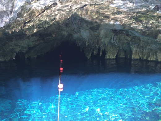 Gran Cenote グランセノーテ_b0129832_0243722.jpg