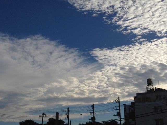 今日の雲~青い空、白い雲、輝く夕日^^~_b0298740_13434684.jpg