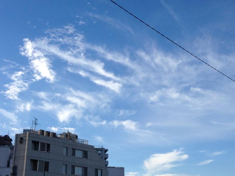 今日の雲~青い空、白い雲、輝く夕日^^~_b0298740_13435525.jpg