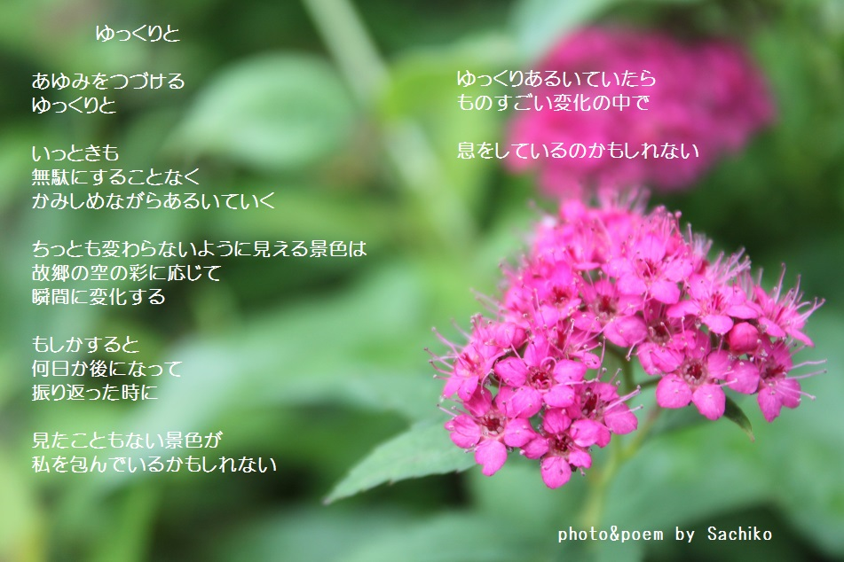 f0351844_09274566.jpg