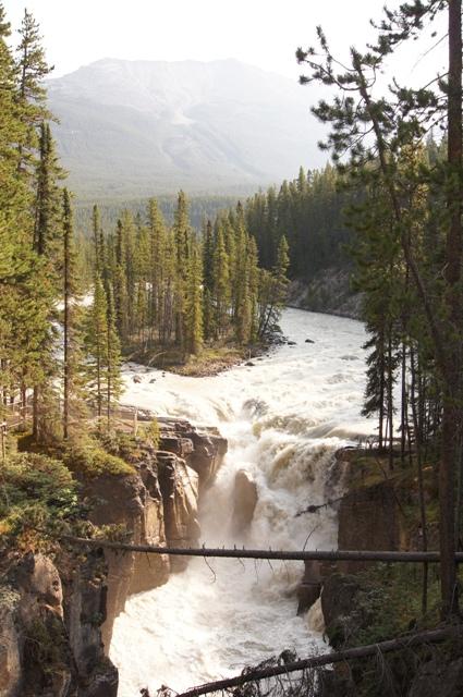 カナダ旅行(6)=コロンビア アイスフィールド=_f0314272_05455915.jpg