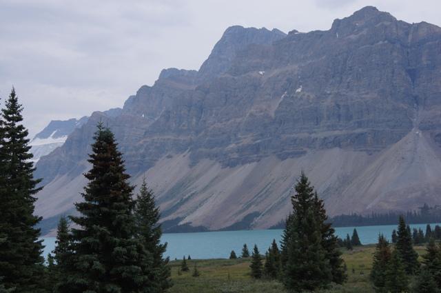 カナダ旅行(6)=コロンビア アイスフィールド=_f0314272_06230247.jpg