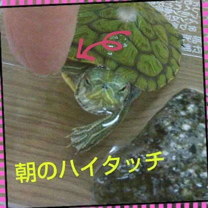 b0337573_00272016.jpg