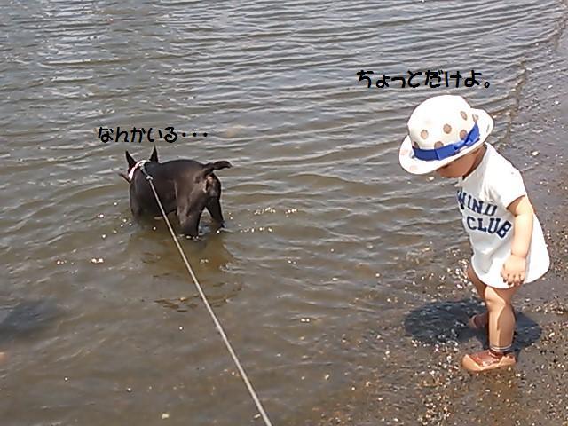 ★海を好きになりましょう  @お台場★_d0187891_11123150.jpg