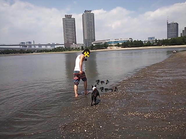 ★海を好きになりましょう  @お台場★_d0187891_1112745.jpg
