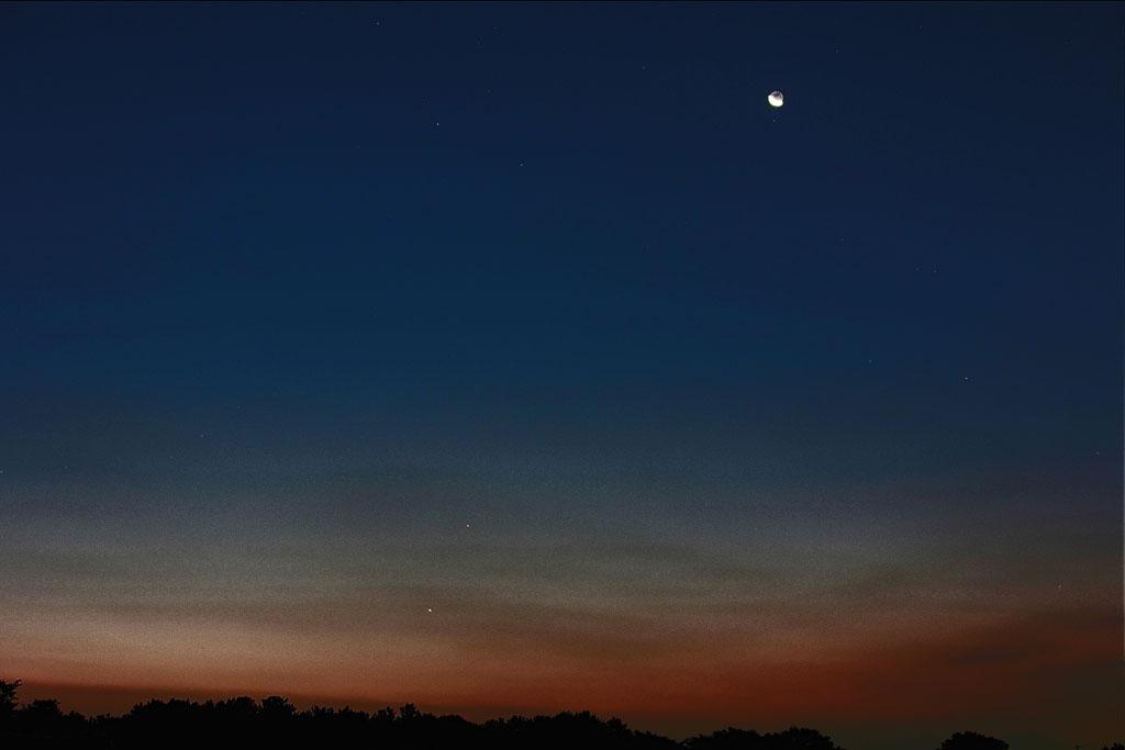 ムナグロ/アオアシシギ/金星・木星&月_b0024798_10361766.jpg