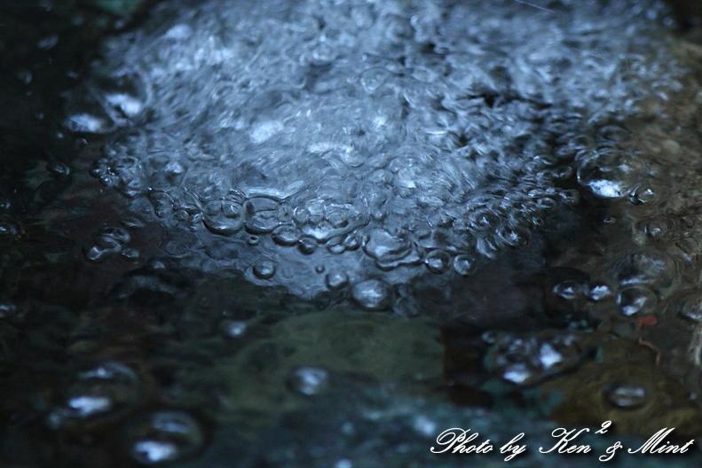 涼を求めて・・ 「自然の宝石」 ♪_e0218518_2013577.jpg