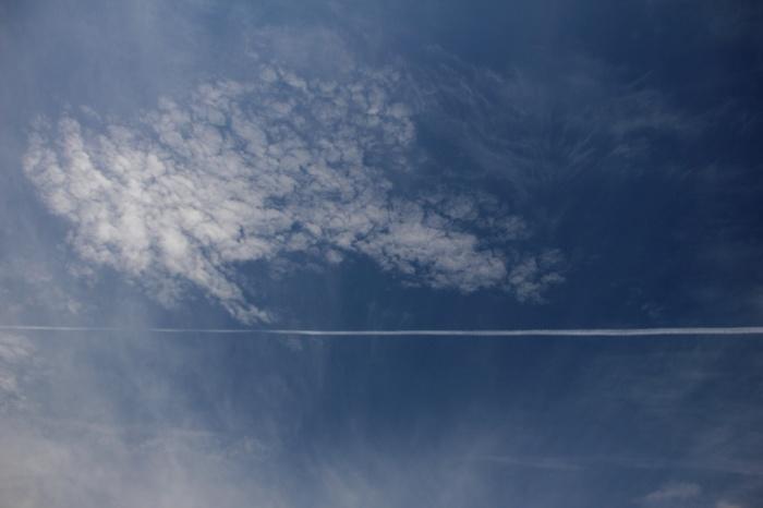 2014.8.24 今日の鳥見は700gの減量・矢倉岳・ヒガラ、ハヤブサ、イワツバメ_c0269342_19572936.jpg