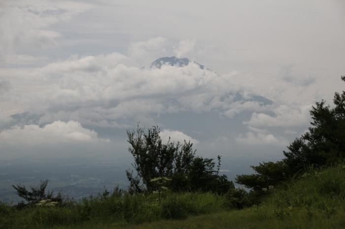 2014.8.24 今日の鳥見は700gの減量・矢倉岳・ヒガラ、ハヤブサ、イワツバメ_c0269342_19583535.jpg