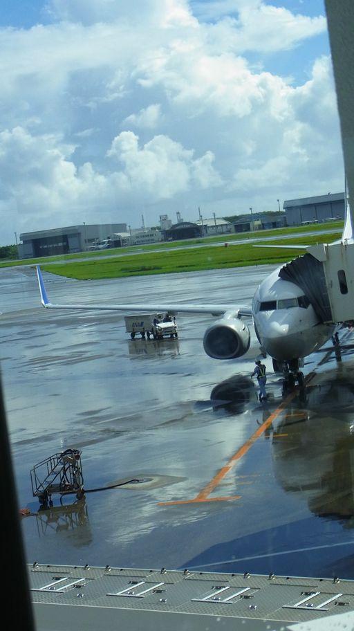 8月15日~18日(雨・くもり・晴れ)タイトル:沖縄遠征ファイナル_f0105542_630447.jpg