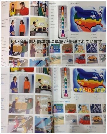 アナベルの剪定 & コスモス & ピクチャーディクショナリー_a0084343_1620656.jpg