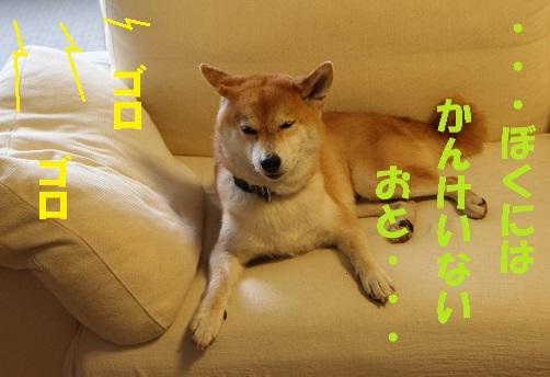 f0245650_09240664.jpg