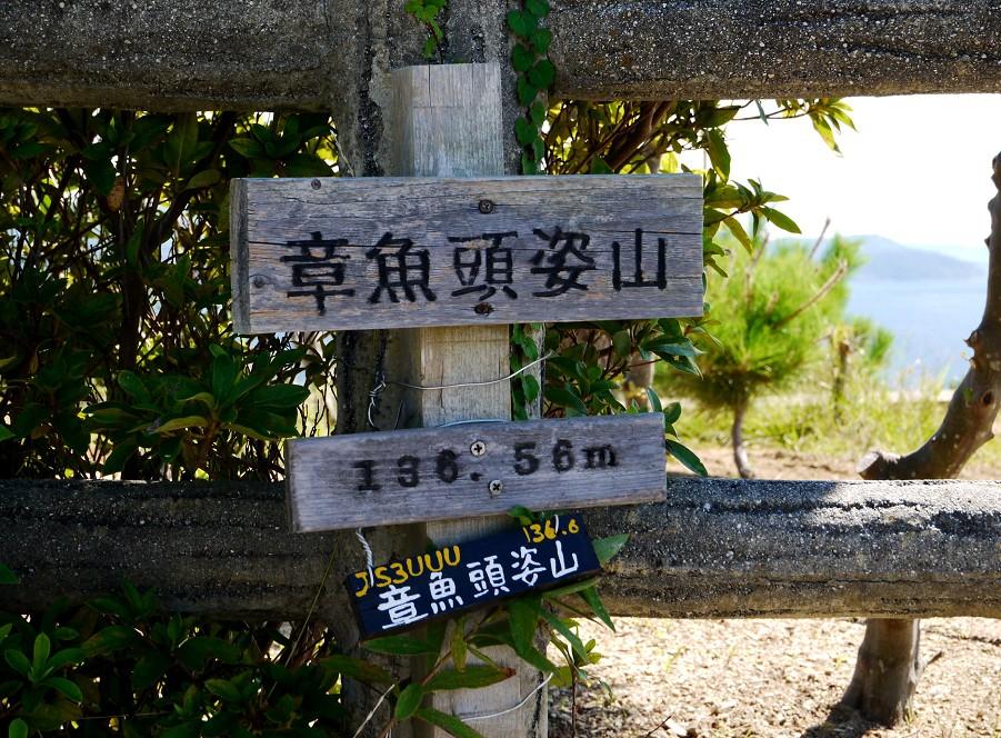 高津子山_b0093754_15573075.jpg