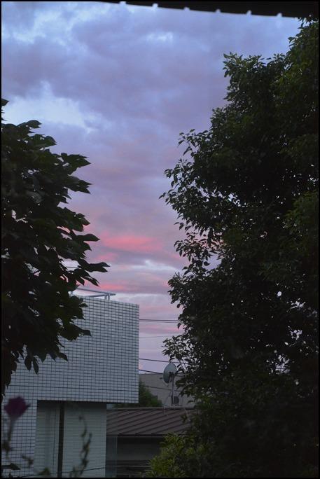 猛暑の夜は<はなもぎ>の黄金桃でベリーニを!_a0031363_22284146.jpg
