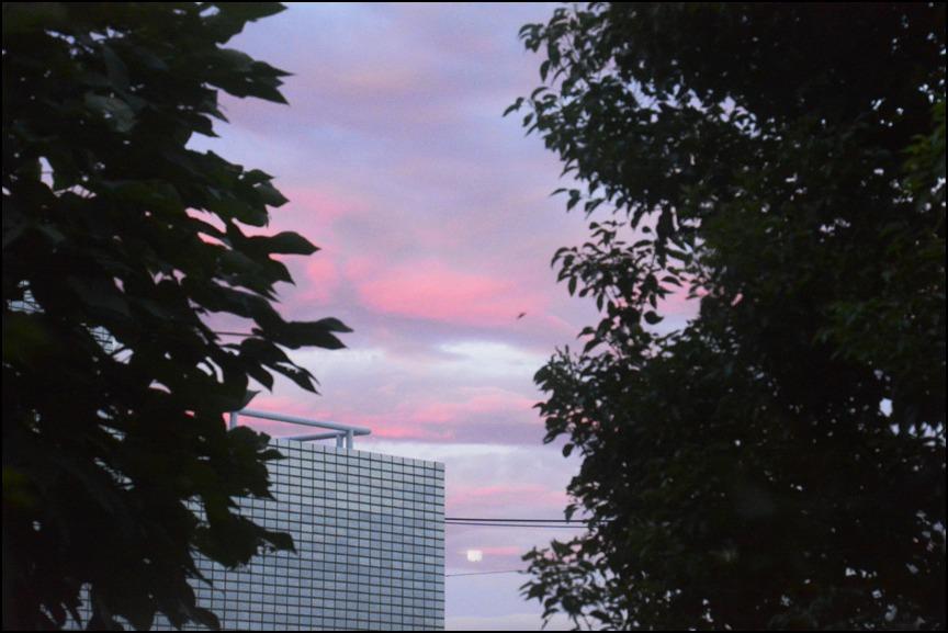 猛暑の夜は<はなもぎ>の黄金桃でベリーニを!_a0031363_22293056.jpg
