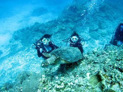 ダイビング☆シュノーケルでもウミガメに会えました!!_a0156273_19434806.jpg