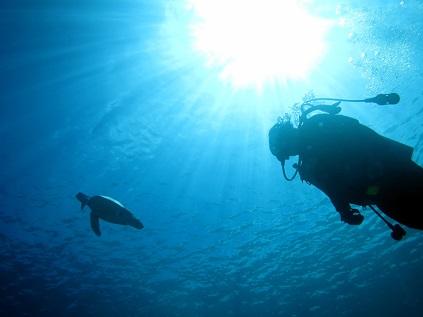 ダイビング☆シュノーケルでもウミガメに会えました!!_a0156273_19451073.jpg