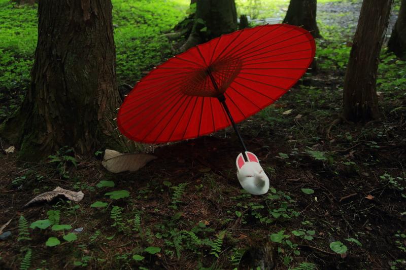 遠野早池峯神社狐の嫁入り_f0075075_2013126.jpg