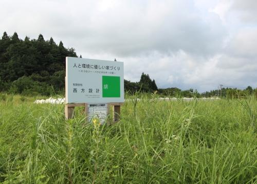 Q1住宅井川土縁:基礎の養生2とブナ_e0054299_11033918.jpg