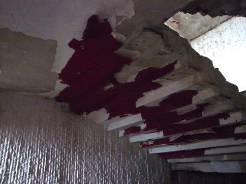 ブルガリア 旧共産党の廃墟_b0141474_1256296.jpg