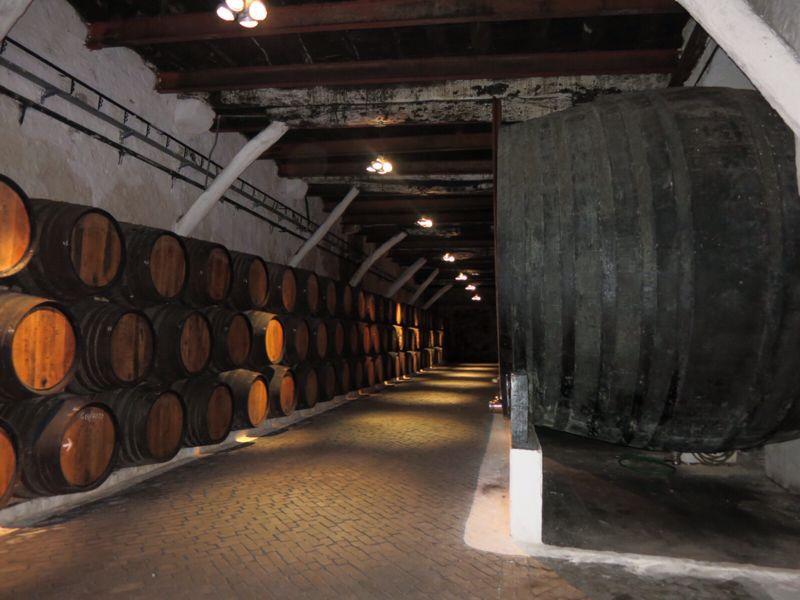 ポルトガル22ポートワイン・サンデマン_e0233674_20463427.jpg