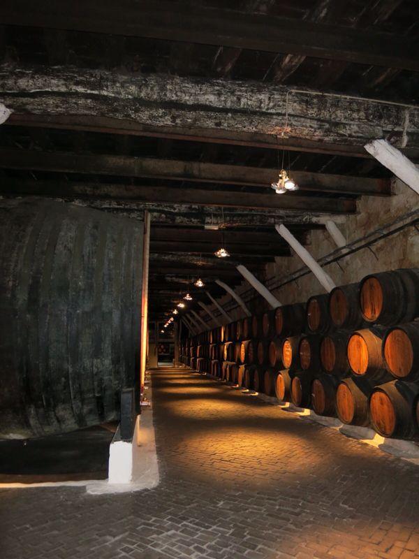 ポルトガル22ポートワイン・サンデマン_e0233674_20463577.jpg