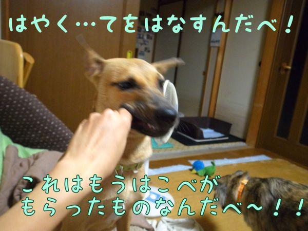 f0329311_10461452.jpg