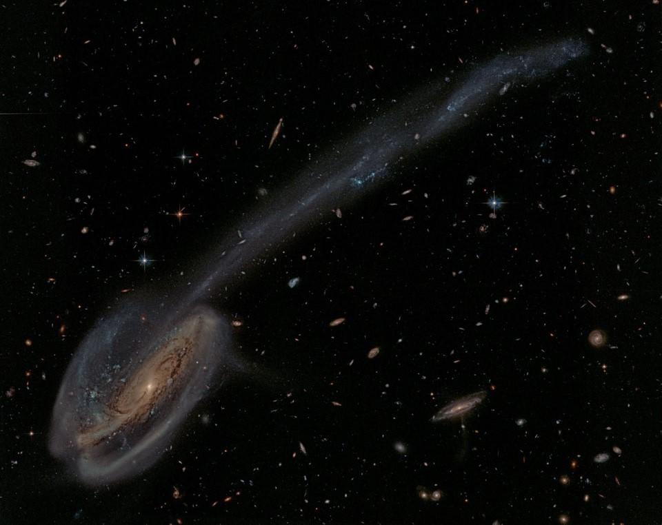 竜座の方向にあるおたまじゃくし銀河(Arp188)_d0063814_18255722.jpg
