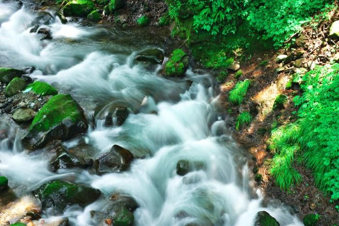 Stream  ・・・水筋・・・_f0333031_07060489.jpg