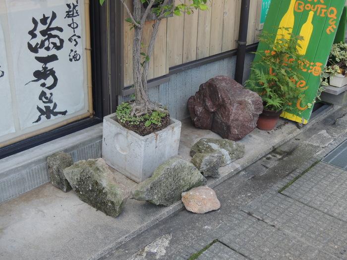 庭園!_a0156636_10111265.jpg