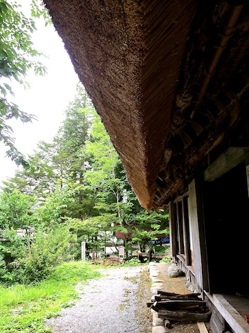 日本の夏_b0338748_22473465.jpg