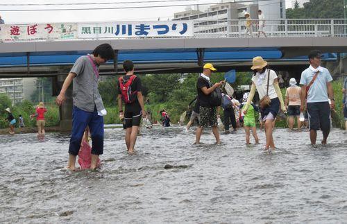 川まつり_d0020180_8155932.jpg