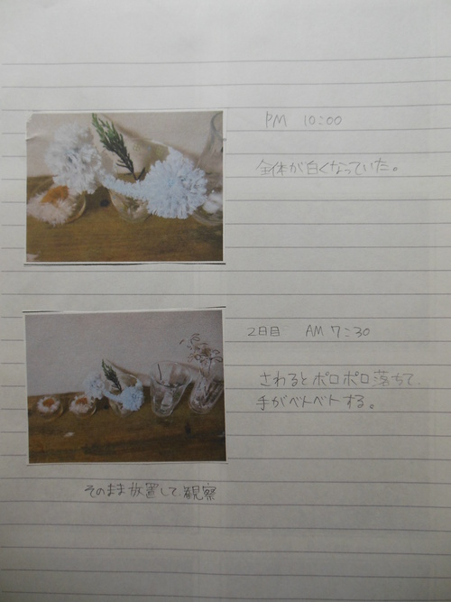 f0208812_13114685.jpg