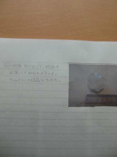 f0208812_1395548.jpg