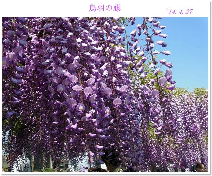 4月の記録,,,_b0025947_20134836.jpg