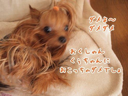 e0248268_07110032.jpg