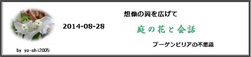 e0033229_19463576.jpg