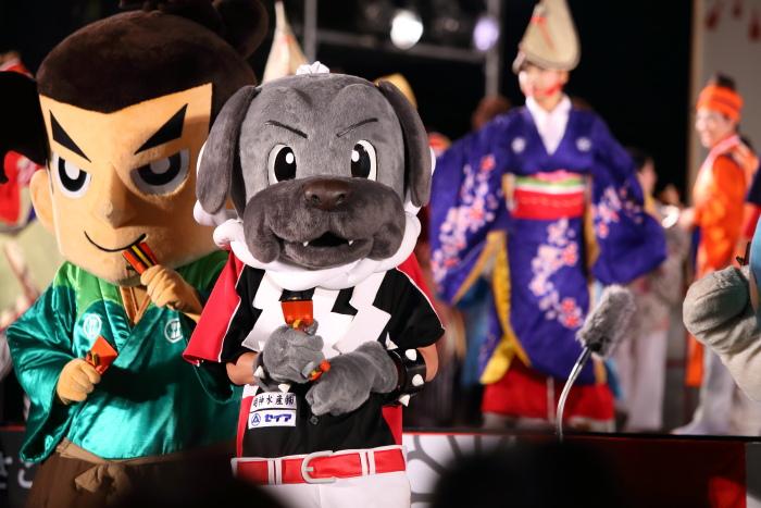第61回よさこい祭り 後夜祭 総踊り_a0077663_1911851.jpg