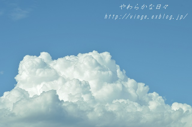 a0158478_13225492.jpg