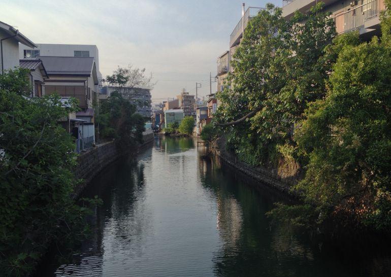 滝の川  横浜市神奈川区_a0163788_22172914.jpg